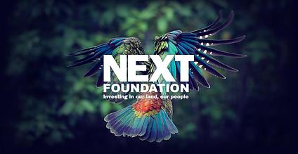 Next Foundation Logo
