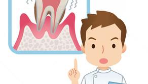 歯周病は知らぬ間に進行しています!! 〈ぬりや歯科医院〉