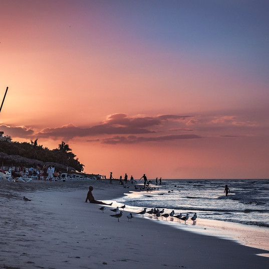 sunset-1756679_960_720.jpg