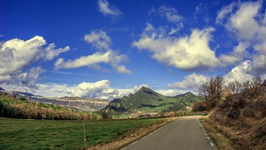 nature-4101364_960_720.jpg