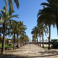 palma-de-mallorca-3794232_960_720.jpg