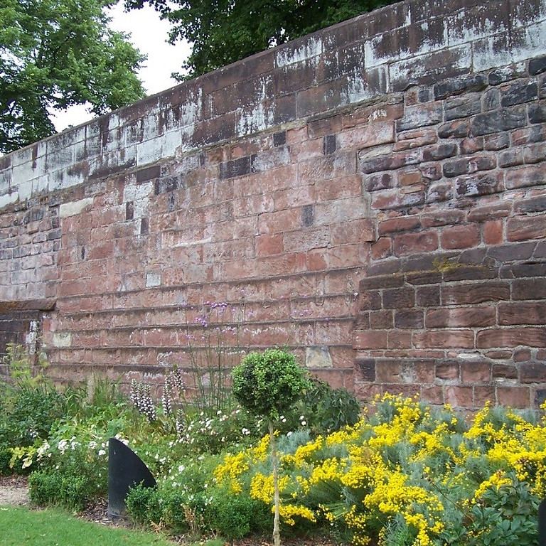 Chester's civil war, 1642-46: regional capital or damp squib?