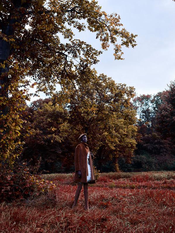 EleganceBos-MartinSweers-0196.jpg