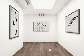Gallery Error in Truth 04.jpg