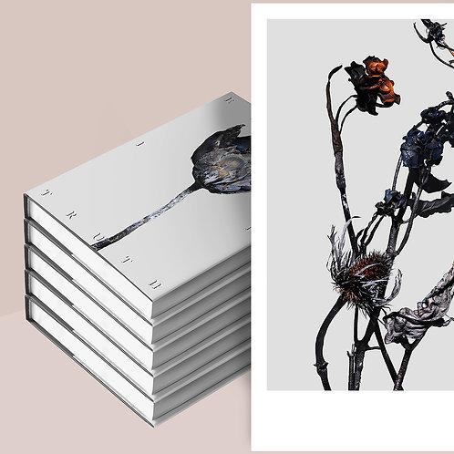 5 Books + A3 Art Print - Error in Truth Pre-Sale