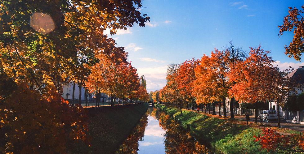 Herbstfarben am Lendkanal