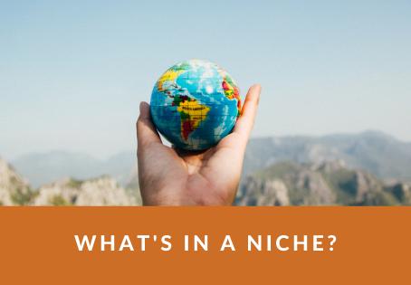 What's in a niche?