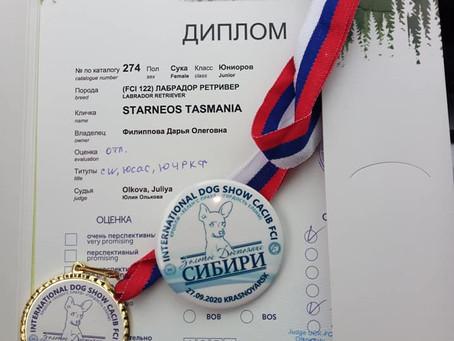 27.09.2020 г.Красноярск,CACIB – FCI