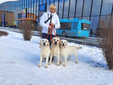 8.03.2021г.Санкт-Петербург,Интернациональная выставка собак CACIB FCI