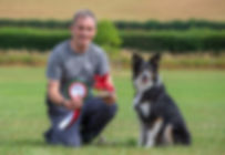 top Agility training at vale dog training centre