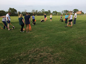 puppy classes pershore