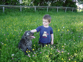 children welcome at Vale Dog Training Centre