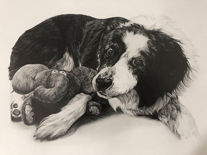 art by Megan Reeves Vale dog training centre