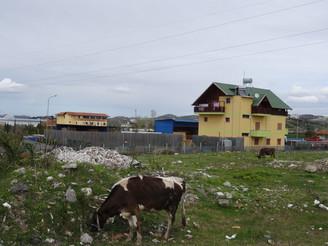 Une Albanie qui bouge