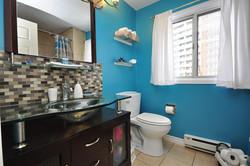 Mississauga Bathroom