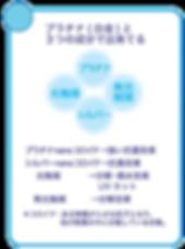 ecolotex-catalog-jp-鉑金塗層構造-1a.png