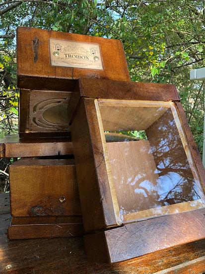 Troibox Walnut Stain Oath Hive