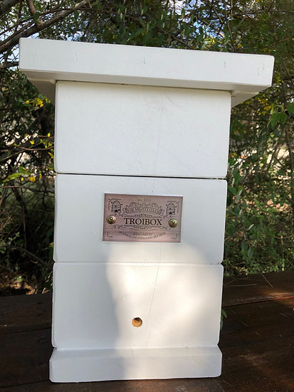 White Induction Hive