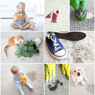 North London carpet cleaning service