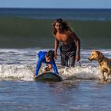 Kids' surf lesson