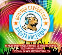 NUEVO LOGO DOMINGO CAVERNICOLA.jpg