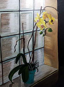 Orchid and Glass