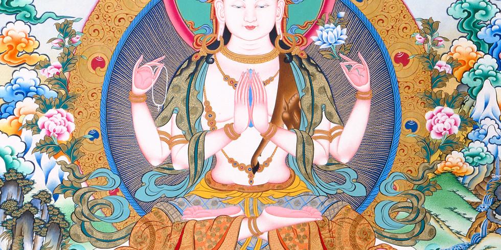 Cours 37 pratiques des Bodhisattvas EN LIGNE