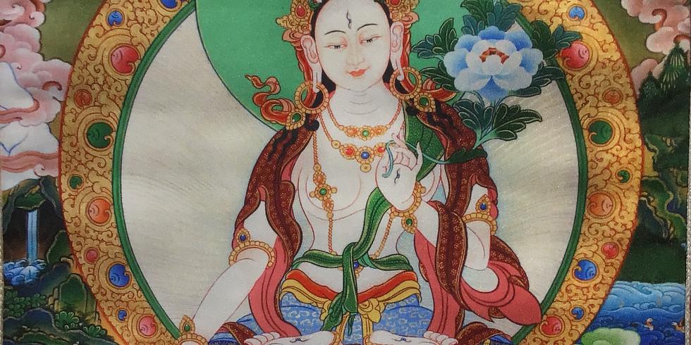 Transmission de pouvoir de Tara blanche