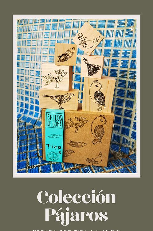 Colección Pájaros