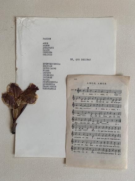 Herbarium IX