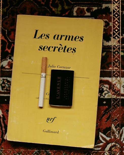 Les Armes Secrètes de Julio Cortázar