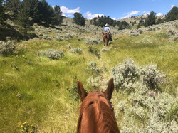 Sunlight Basin thru a horses ears