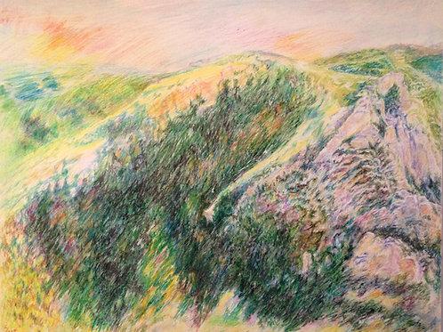 Tuscon Rock