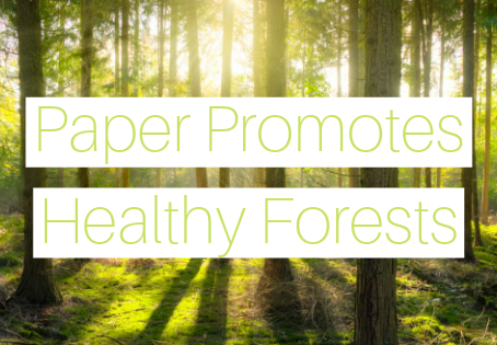 Paper Promotes Healthy Forests