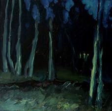 Dove Creek Nocturne