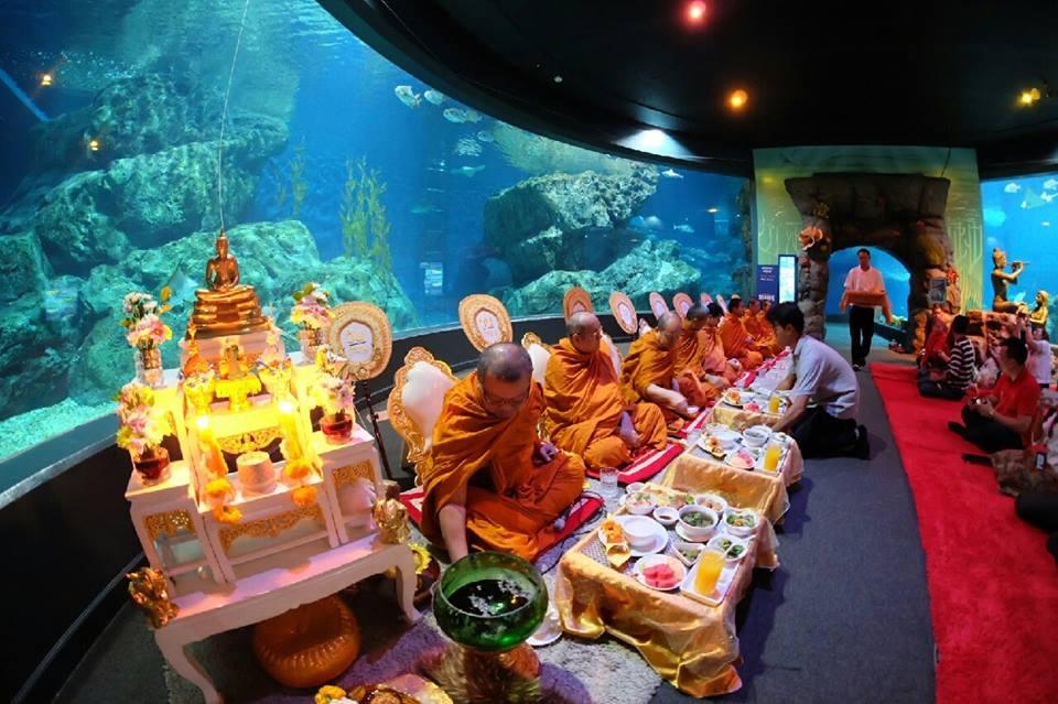 ทำบุญประจำปี @Siam Ocean World1