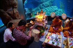 ทำบุญประจำปี @Siam Ocean World10