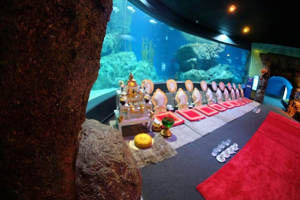 ทำบุญประจำปี @Siam Ocean World7