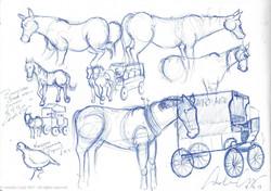 Horse Study 01