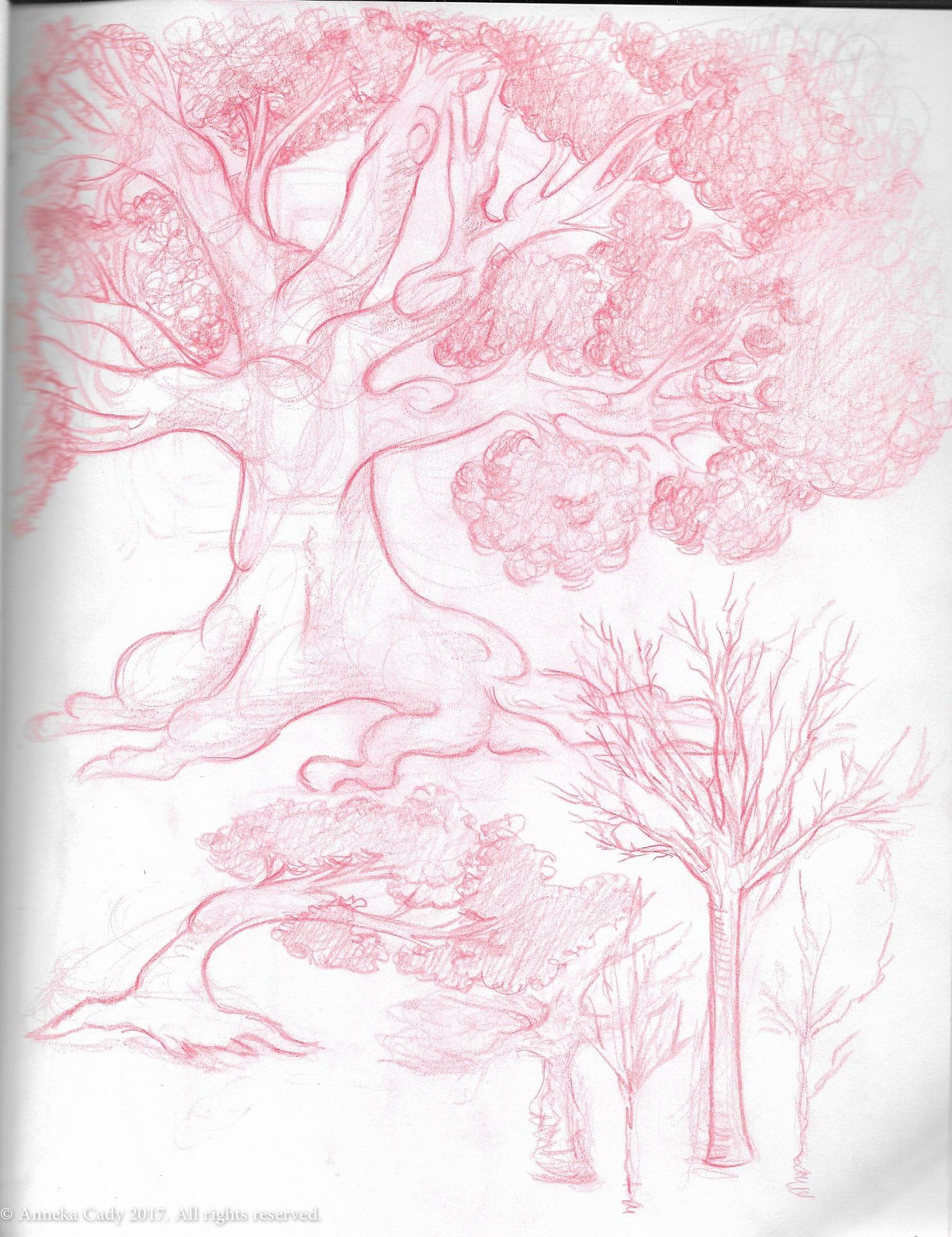 A Tree Variety