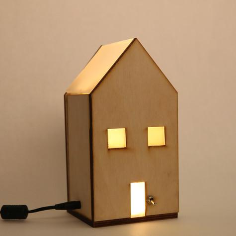 Teeny Tiny House