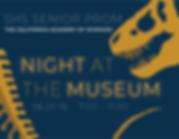 NightAtMuseumBID-02.png