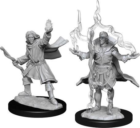 Elf Sorcerer Male
