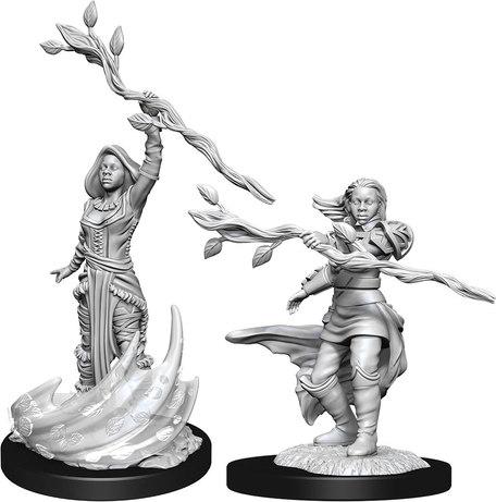 Human Druid Female