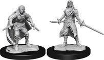Half-Elf Rogue Female