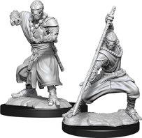 Warforged Monk