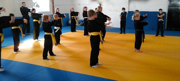 Helston Ju Jitsu Club