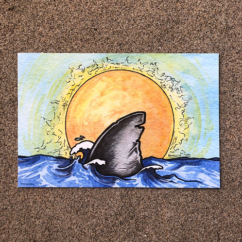 4x6 Print - Sunshine Shark Fin