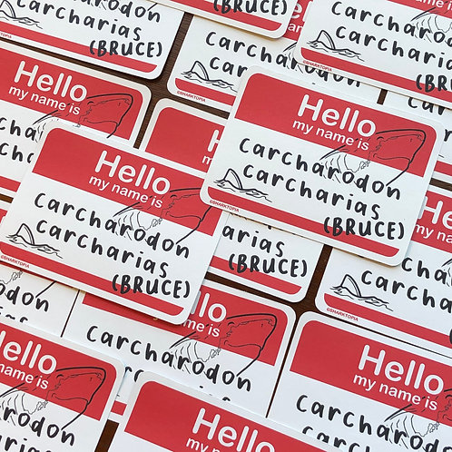15 Eco Paper Stickers ('Hello my name is...')