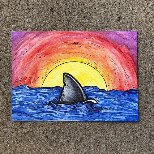 5x7 Print - Sunset Shark Fin